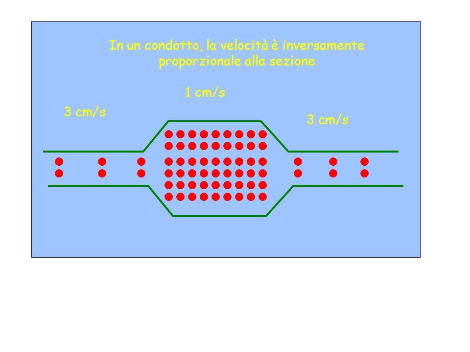 In un condotto, la velocità è inversamente proporzionale alla sezione 3 cm/s 1 cm/s 3 cm/s