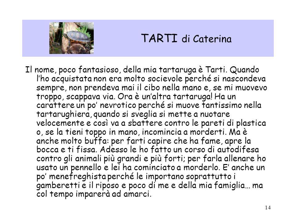 14 TARTI di Caterina Il nome, poco fantasioso, della mia tartaruga è Tarti. Quando lho acquistata non era molto socievole perché si nascondeva sempre,