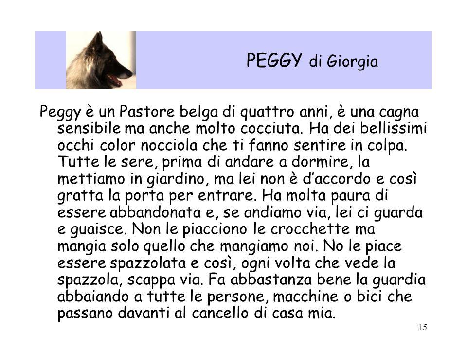 15 PEGGY di Giorgia Peggy è un Pastore belga di quattro anni, è una cagna sensibile ma anche molto cocciuta. Ha dei bellissimi occhi color nocciola ch