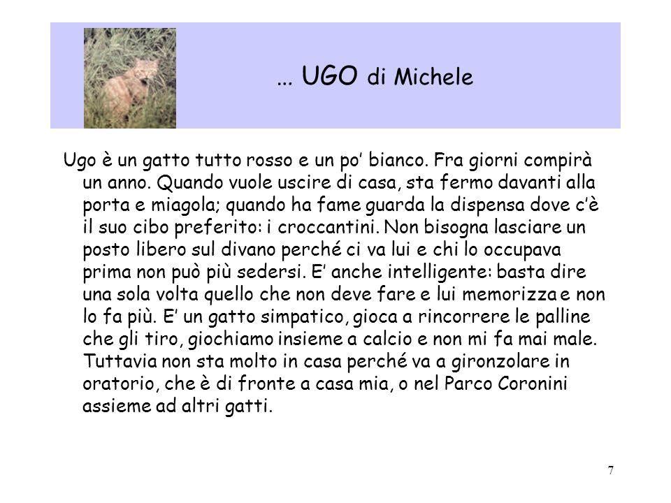 7 … UGO di Michele Ugo è un gatto tutto rosso e un po bianco. Fra giorni compirà un anno. Quando vuole uscire di casa, sta fermo davanti alla porta e