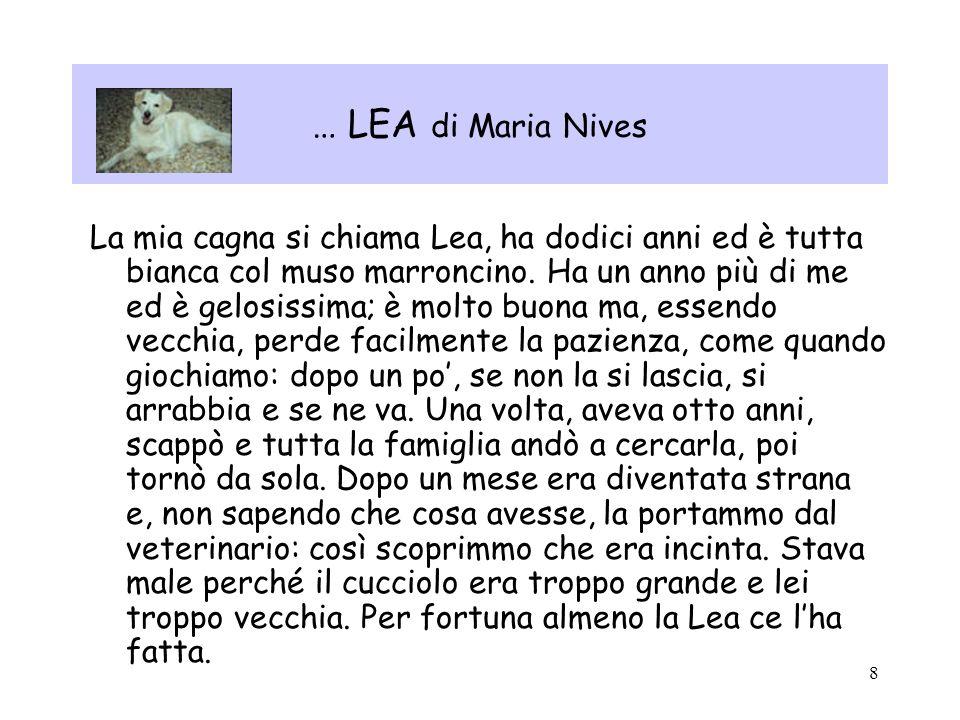 8 … LEA di Maria Nives La mia cagna si chiama Lea, ha dodici anni ed è tutta bianca col muso marroncino. Ha un anno più di me ed è gelosissima; è molt