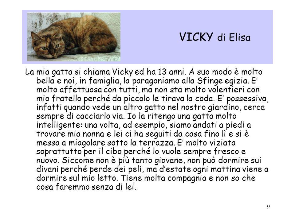 9 VICKY di Elisa La mia gatta si chiama Vicky ed ha 13 anni. A suo modo è molto bella e noi, in famiglia, la paragoniamo alla Sfinge egizia. E molto a