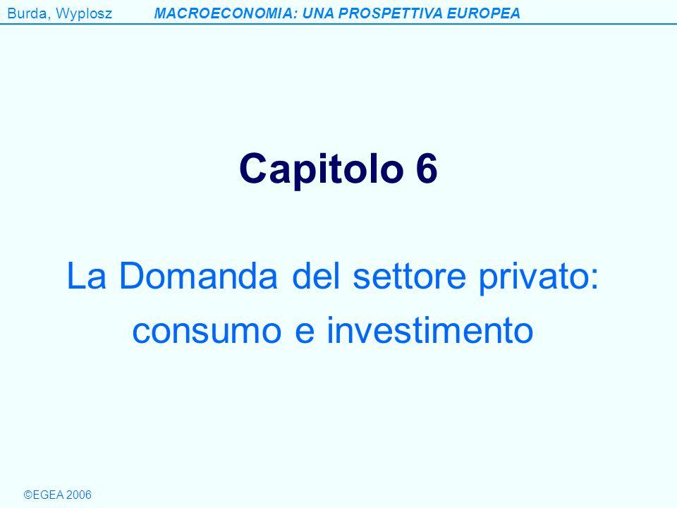 Burda, WyploszMACROECONOMIA: UNA PROSPETTIVA EUROPEA ©EGEA 2006 Capitolo 6 La Domanda del settore privato: consumo e investimento