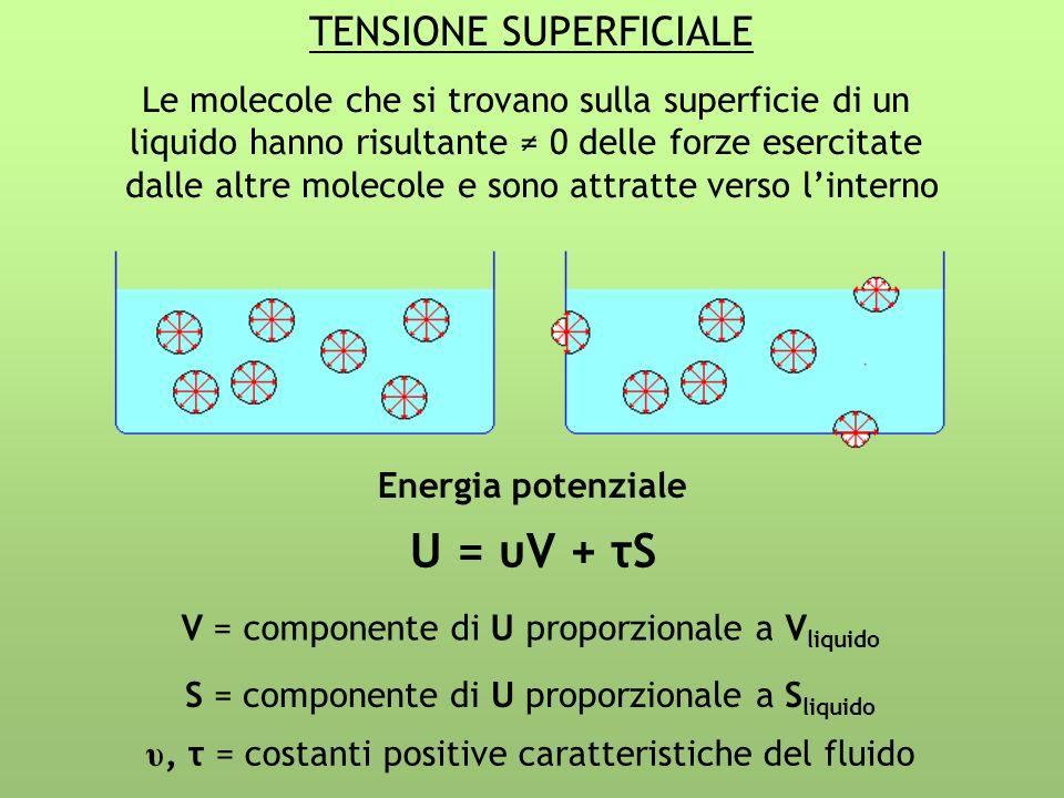 TENSIONE SUPERFICIALE Le molecole che si trovano sulla superficie di un liquido hanno risultante 0 delle forze esercitate dalle altre molecole e sono