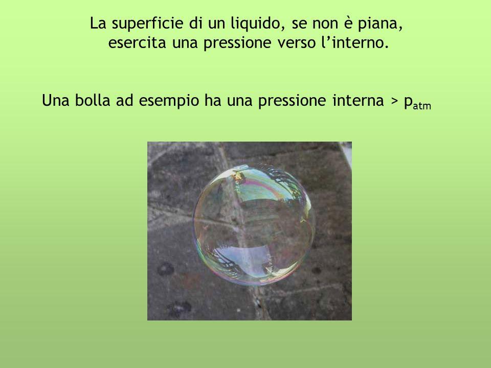 La superficie di un liquido, se non è piana, esercita una pressione verso linterno. Una bolla ad esempio ha una pressione interna > p atm