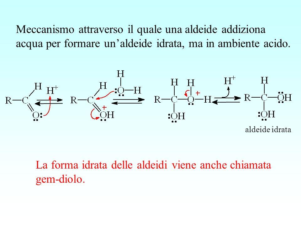 aldeide idrata Meccanismo attraverso il quale una aldeide addiziona acqua per formare unaldeide idrata, ma in ambiente acido. La forma idrata delle al