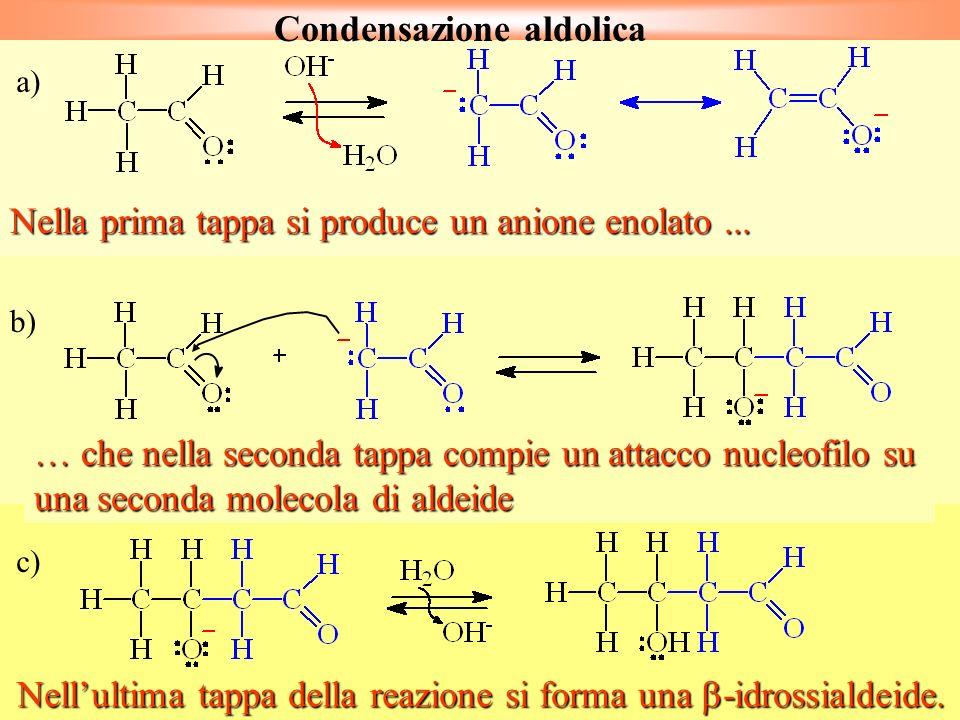 c) Nellultima tappa della reazione si forma una -idrossialdeide. b) … che nella seconda tappa compie un attacco nucleofilo su una seconda molecola di