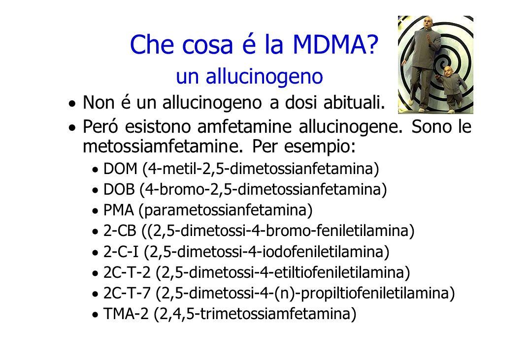 Che cosa é la MDMA? un allucinogeno Non é un allucinogeno a dosi abituali. Peró esistono amfetamine allucinogene. Sono le metossiamfetamine. Per esemp