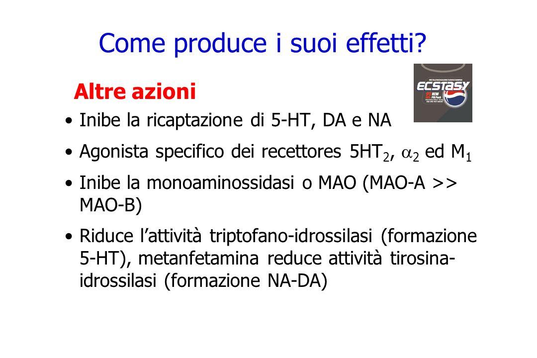 Come produce i suoi effetti? Altre azioni Inibe la ricaptazione di 5-HT, DA e NA Agonista specifico dei recettores 5HT 2, 2 ed M 1 Inibe la monoaminos
