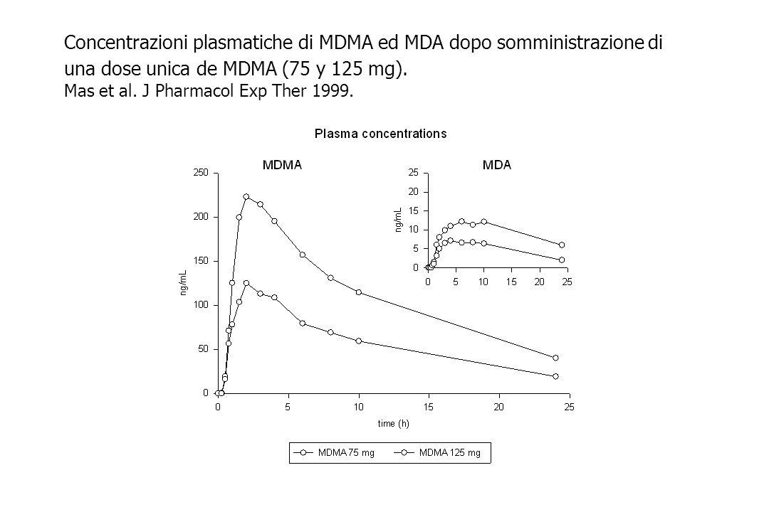 Concentrazioni plasmatiche di MDMA ed MDA dopo somministrazione di una dose unica de MDMA (75 y 125 mg). Mas et al. J Pharmacol Exp Ther 1999.