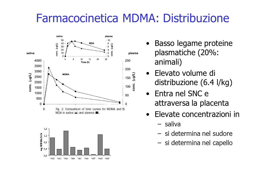 Farmacocinetica MDMA: Distribuzione Basso legame proteine plasmatiche (20%: animali) Elevato volume di distribuzione (6.4 l/kg) Entra nel SNC e attrav