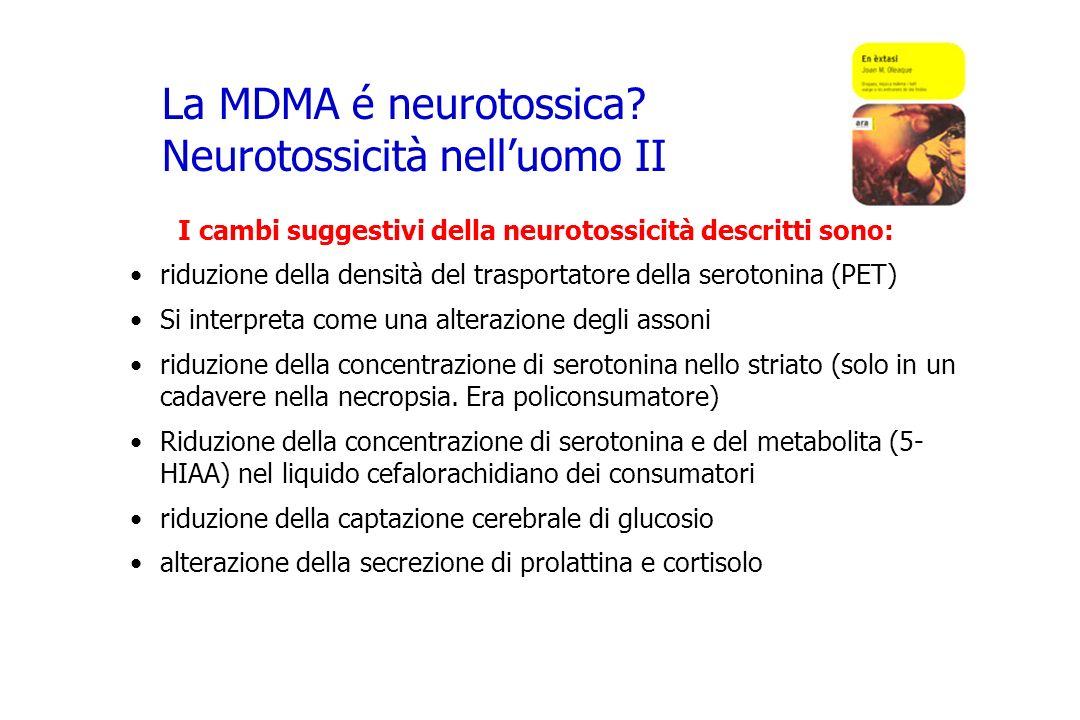 La MDMA é neurotossica? Neurotossicità nelluomo II I cambi suggestivi della neurotossicità descritti sono: riduzione della densità del trasportatore d