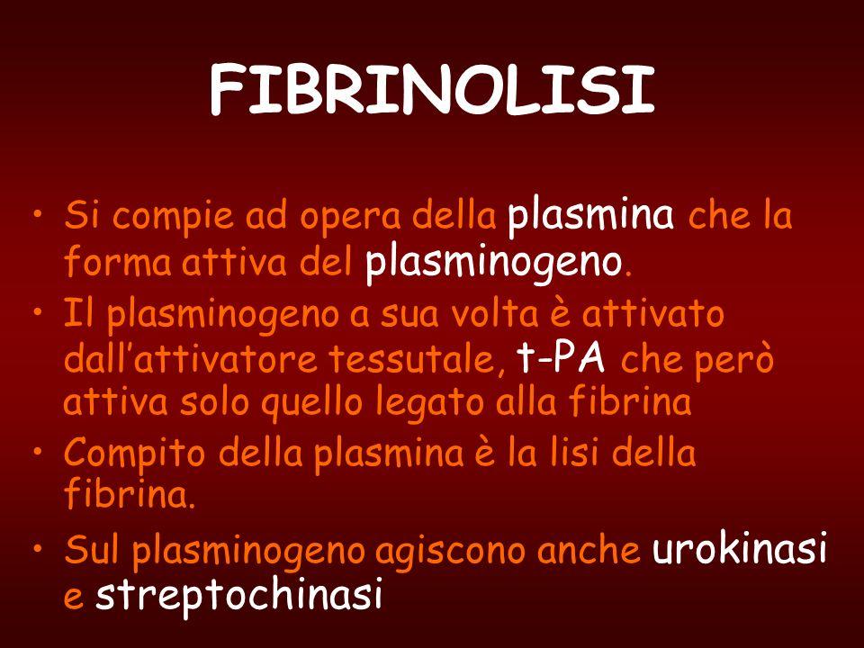 FIBRINOLISI Si compie ad opera della plasmina che la forma attiva del plasminogeno. Il plasminogeno a sua volta è attivato dallattivatore tessutale, t