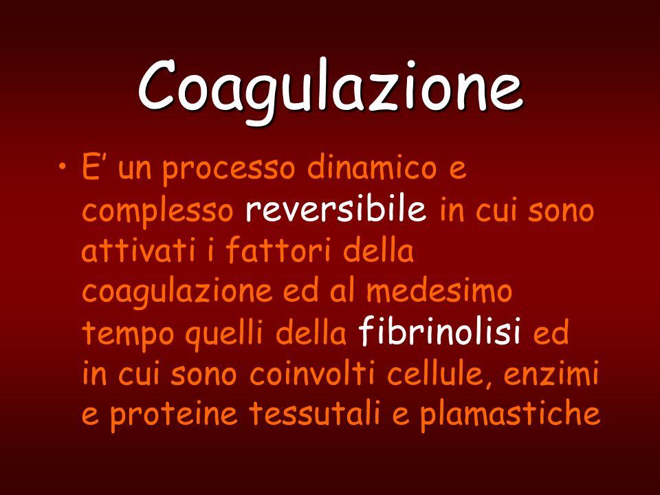 Coagulazione E un sistema, generale che tuttavia opera localmente in continua attività con momenti di maggiore o minore attività funzionale ma in perfetto equilibrio tra due condizioni patologiche: emorragia trombosi