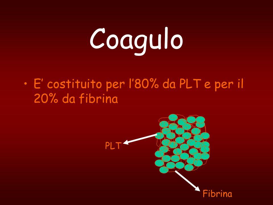 Coagulo E costituito per l80% da PLT e per il 20% da fibrina PLT Fibrina