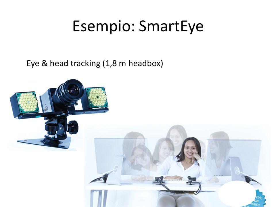 Esempio: SmartEye Eye & head tracking (1,8 m headbox)