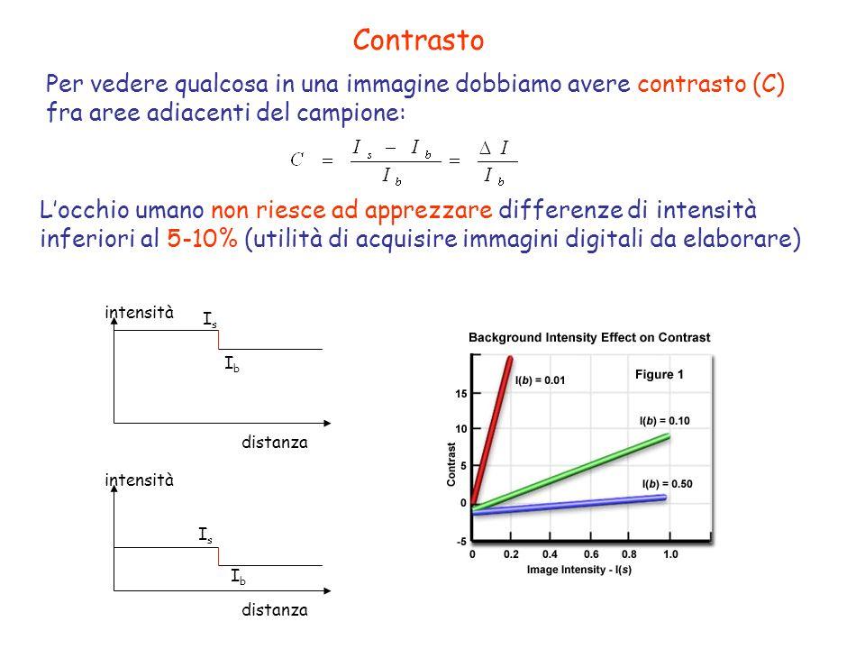 Contrasto Per vedere qualcosa in una immagine dobbiamo avere contrasto (C) fra aree adiacenti del campione: Locchio umano non riesce ad apprezzare dif
