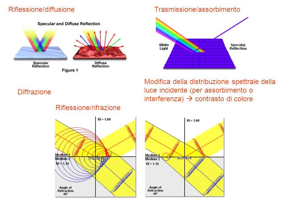 Trasmissione/assorbimentoRiflessione/diffusione Modifica della distribuzione spettrale della luce incidente (per assorbimento o interferenza) contrast