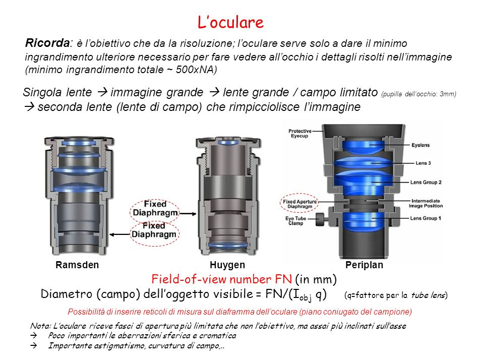 Nota: Loculare riceve fasci di apertura più limitata che non lobiettivo, ma assai più inclinati sullasse Poco importanti le aberrazioni sferica e crom