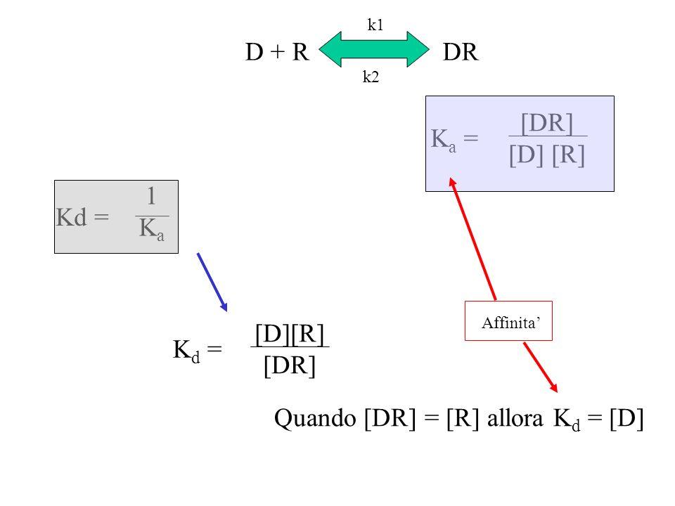 D + RDR [DR] [D] [R] K a = 1Ka1Ka Kd = Quando [DR] = [R] allora K d = [D] [D][R] [DR] K d = k1 k2 Affinita