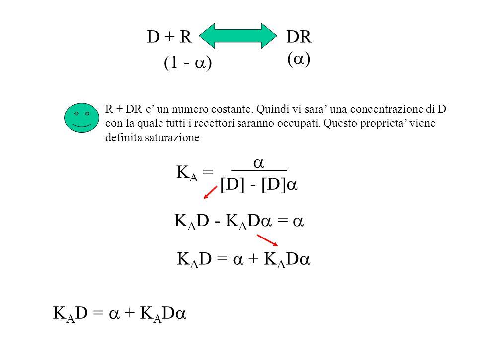 D + RDR ( ) (1 - ) R + DR e un numero costante. Quindi vi sara una concentrazione di D con la quale tutti i recettori saranno occupati. Questo proprie