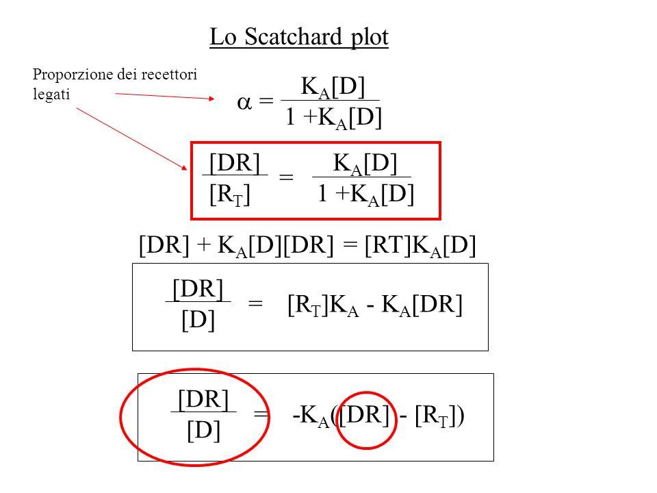 Lo Scatchard plot = K A [D] 1 +K A [D] [DR] [R T ] K A [D] 1 +K A [D] = [DR] + K A [D][DR] = [RT]K A [D] =[R T ]K A - K A [DR] [DR] [D] =-K A ([DR] -