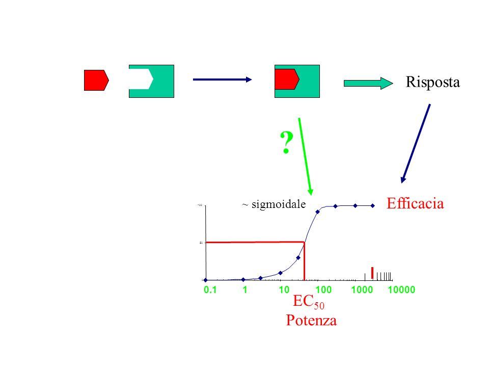 Lo Scatchard plot = K A [D] 1 +K A [D] [DR] [R T ] K A [D] 1 +K A [D] = [DR] + K A [D][DR] = [RT]K A [D] =[R T ]K A - K A [DR] [DR] [D] =-K A ([DR] - [R T ]) [DR] [D] Proporzione dei recettori legati