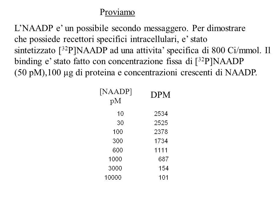 Proviamo LNAADP e un possibile secondo messaggero. Per dimostrare che possiede recettori specifici intracellulari, e stato sintetizzato [ 32 P]NAADP a