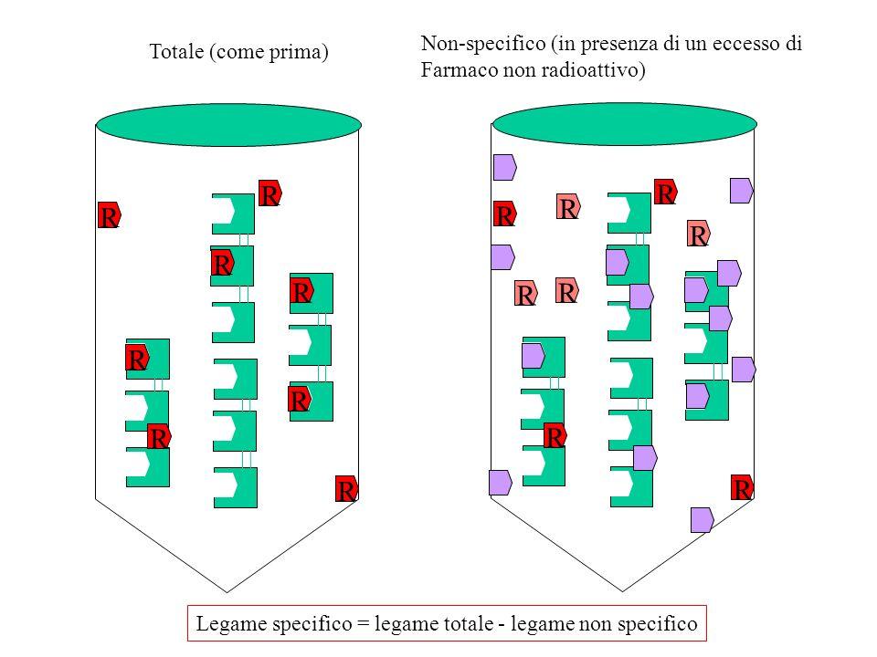 Protocollo di binding (tipo 1) ([crescenti] di radioattivo R [R] R [3R] R R [10R] R R R [30R] R R R R R + tutti i non-specifici rispettivi