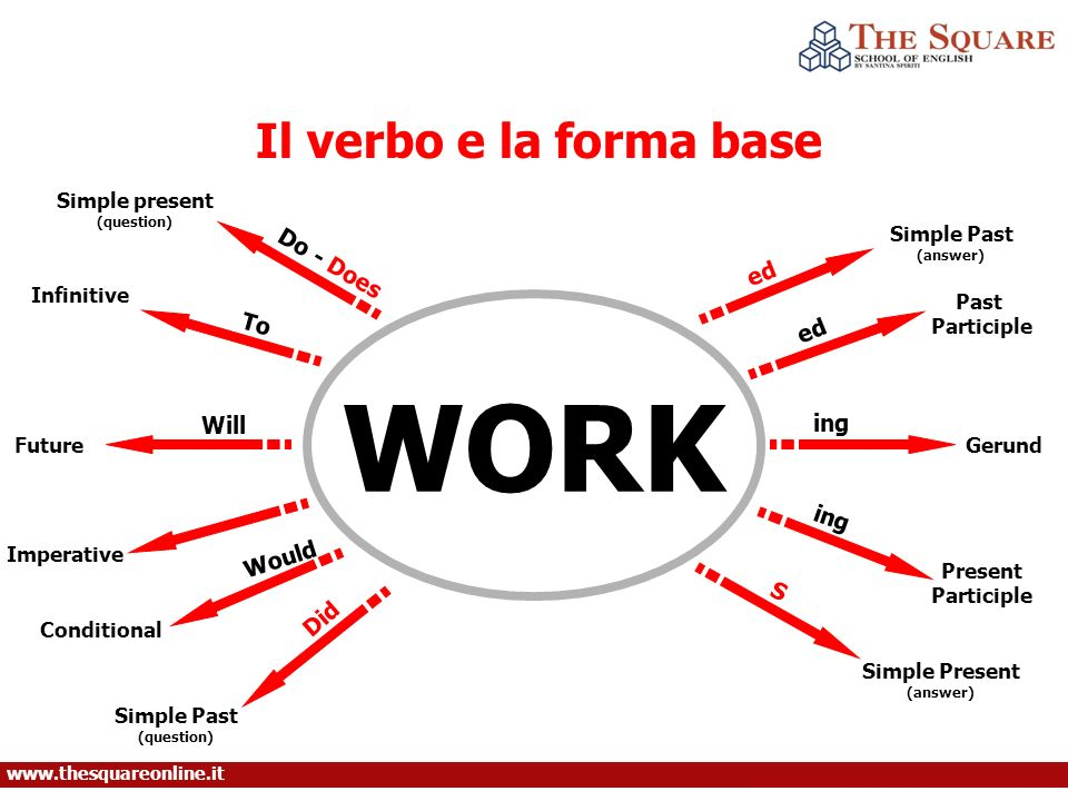 Il verbo e la forma base WORK Do - Does To Will Would Did ed ing S Simple present (question) Infinitive Future Conditional Imperative Simple Past (question) Simple Present (answer) Simple Past (answer) Past Participle Gerund Present Participle www.thesquareonline.it