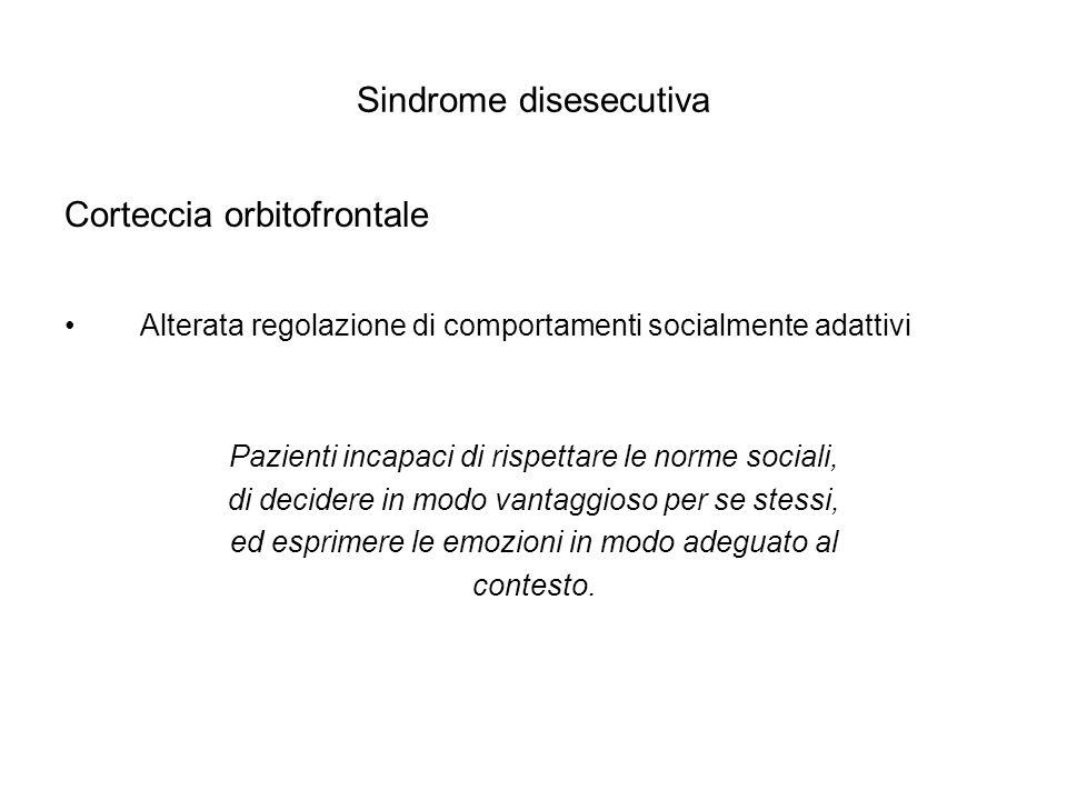 Sindrome disesecutiva Corteccia orbitofrontale Alterata regolazione di comportamenti socialmente adattivi Pazienti incapaci di rispettare le norme soc