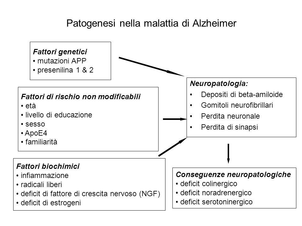 Patogenesi nella malattia di Alzheimer Fattori genetici mutazioni APP presenilina 1 & 2 Neuropatologia: Depositi di beta-amiloide Gomitoli neurofibril