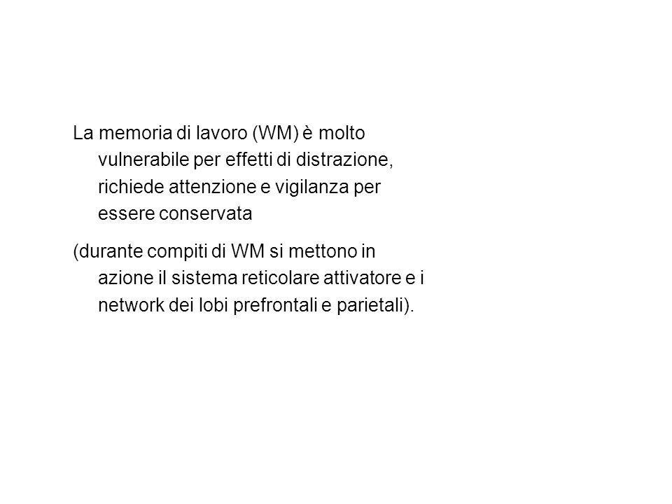 La memoria di lavoro (WM) è molto vulnerabile per effetti di distrazione, richiede attenzione e vigilanza per essere conservata (durante compiti di WM