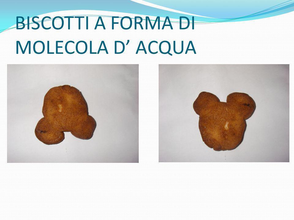 BISCOTTI A FORMA DI MOLECOLA D ACQUA