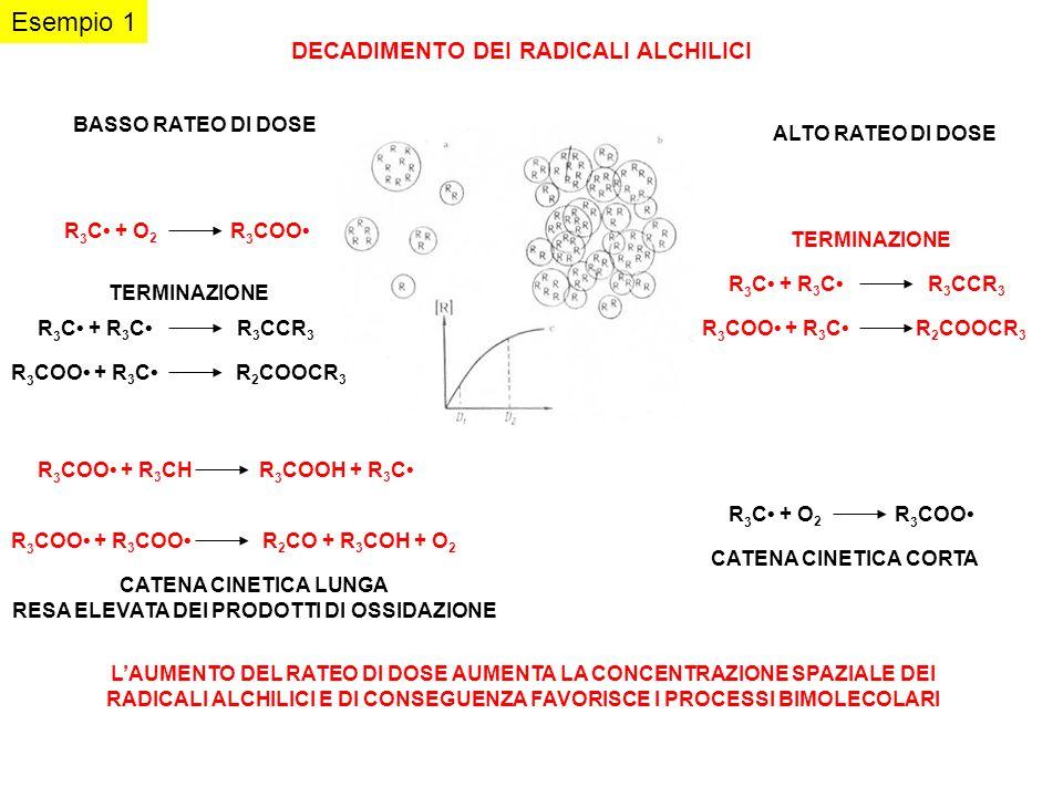 DECADIMENTO DEI RADICALI ALCHILICI R 3 COO + R 3 C R 2 COOCR 3 R 3 C + R 3 C R 3 CCR 3 R 3 COO + R 3 COO R 2 CO + R 3 COH + O 2 R 3 C + O 2 R 3 COO CA