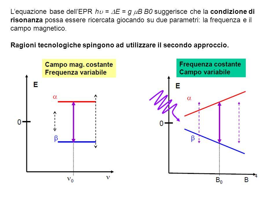 Lequazione base dellEPR h = E = g B B0 suggerisce che la condizione di risonanza possa essere ricercata giocando su due parametri: la frequenza e il c
