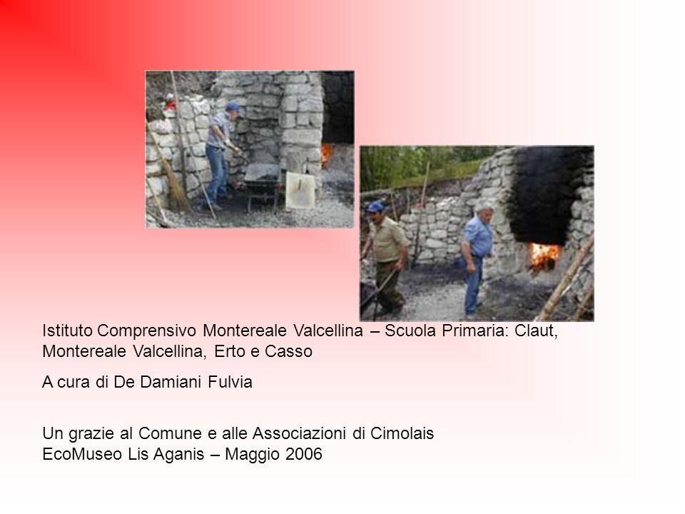 Istituto Comprensivo Montereale Valcellina – Scuola Primaria: Claut, Montereale Valcellina, Erto e Casso A cura di De Damiani Fulvia Un grazie al Comu