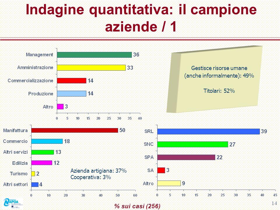 14 Indagine quantitativa: il campione aziende / 1 % sui casi (256) Gestisce risorse umane (anche informalmente): 49% Titolari: 52% Azienda artigiana: