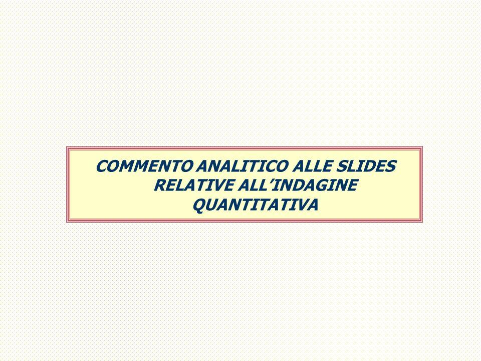 COMMENTO ANALITICO ALLE SLIDES RELATIVE ALLINDAGINE QUANTITATIVA