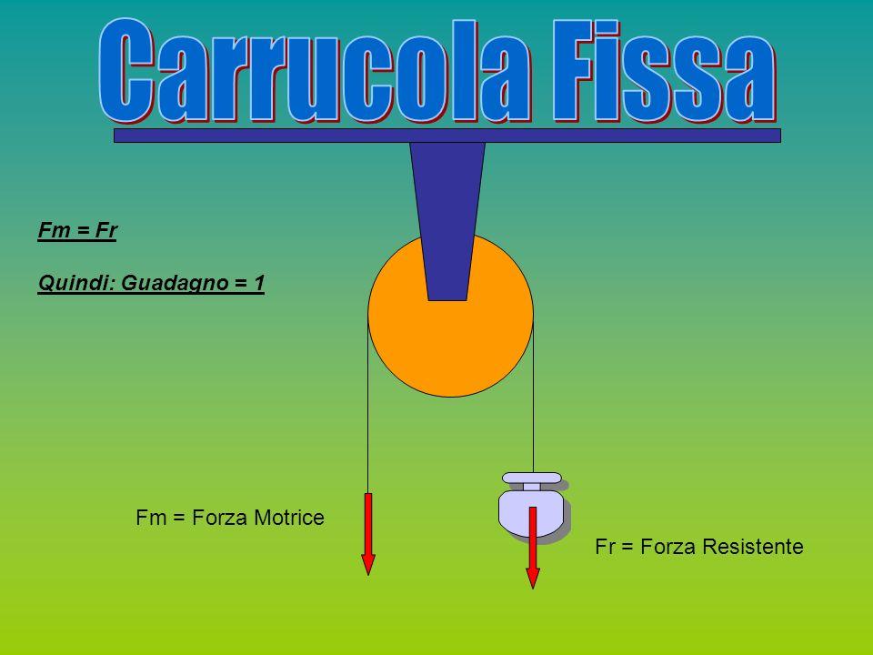 Fr = Forza Resistente Fm = Forza Motrice R = Reazione Vincolare Fm = Fr/2 Perché La somma delle forze è 0 quindi R+Fm=Fr