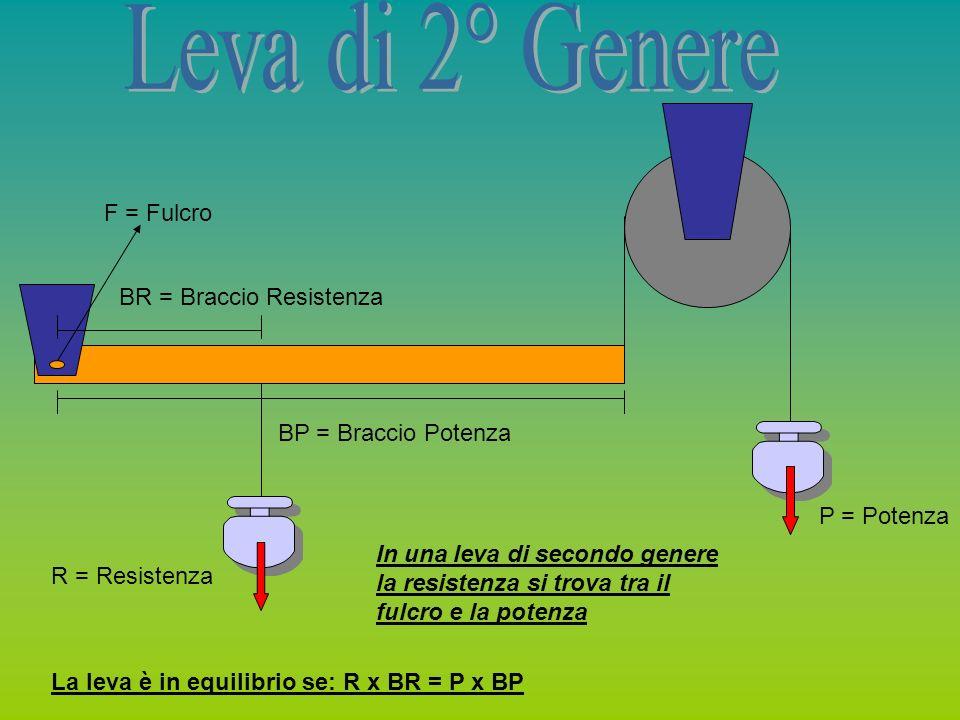R = Resistenza P = Potenza F = Fulcro BR = Braccio Resistenza BP = Braccio Potenza In una leva di secondo genere la resistenza si trova tra il fulcro