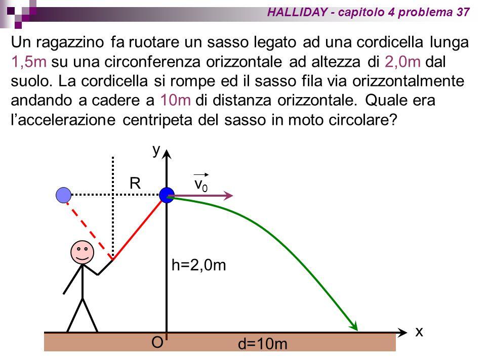 HALLIDAY - capitolo 4 problema 37 Un ragazzino fa ruotare un sasso legato ad una cordicella lunga 1,5m su una circonferenza orizzontale ad altezza di