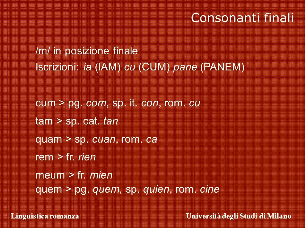 Linguistica romanzaUniversità degli Studi di Milano /m/ in posizione finale Iscrizioni: ia (IAM) cu (CUM) pane (PANEM) cum > pg. com, sp. it. con, rom