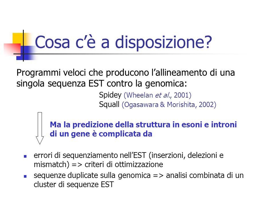 Cosa cè a disposizione? Programmi veloci che producono lallineamento di una singola sequenza EST contro la genomica: Spidey (Wheelan et al., 2001) Squ