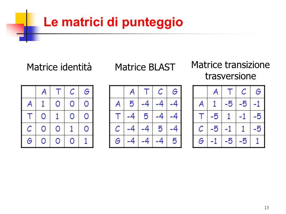 13 Le matrici di punteggio A T C G A 1 0 0 0 T 0 1 0 0 C 0 0 1 0 G 0 0 0 1 A T C G A 5-4 T 5 C 5 G 5 A T C G A 1-5 T-5 1-5 C 1-5 G-5 1 Matrice identit