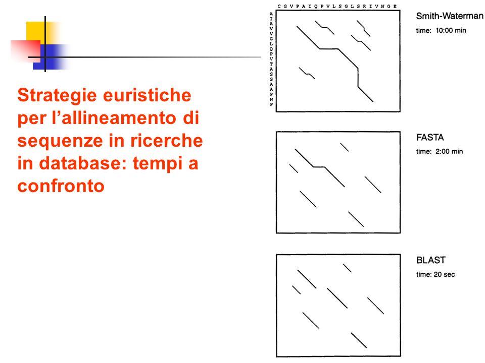 31 Strategie euristiche per lallineamento di sequenze in ricerche in database: tempi a confronto