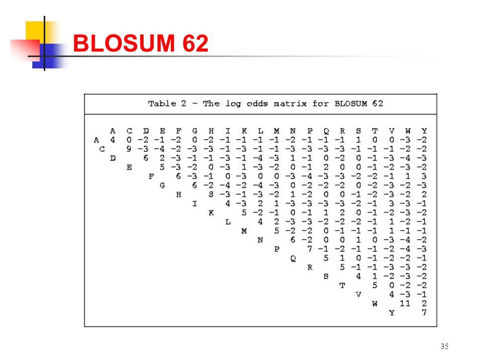 35 BLOSUM 62
