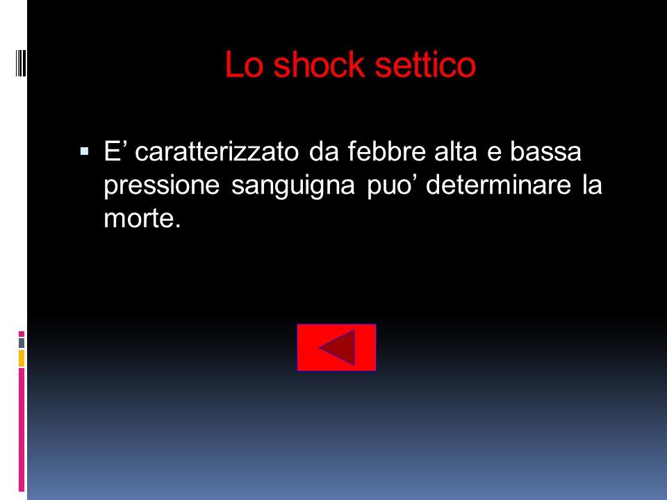 Lo shock settico E caratterizzato da febbre alta e bassa pressione sanguigna puo determinare la morte.