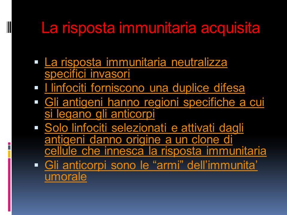 La risposta immunitaria acquisita La risposta immunitaria neutralizza specifici invasori La risposta immunitaria neutralizza specifici invasori I linf