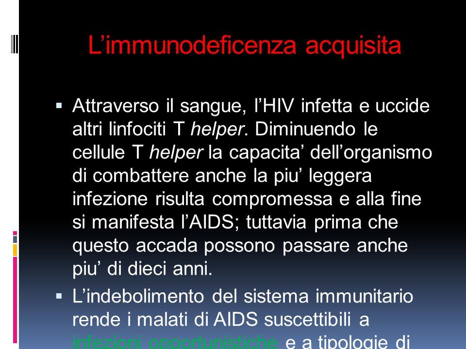 Limmunodeficenza acquisita Attraverso il sangue, lHIV infetta e uccide altri linfociti T helper. Diminuendo le cellule T helper la capacita dellorgani